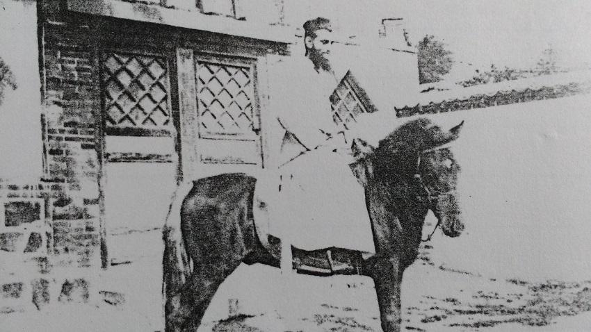 Met paard Bruno
